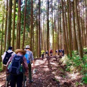 8月11日は山の日。標高712.4m、土岐市で一番高い山『曽良山』登山に参加してきました。登りと下りが険しく、もぅ足パンパン(><)