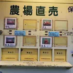 """【肥田町にあるTの自販機】24時間いつでも新鮮な玉子が買える """"かつまた玉子"""" さんの自販機をちょいちょい使わせて頂いてます。"""