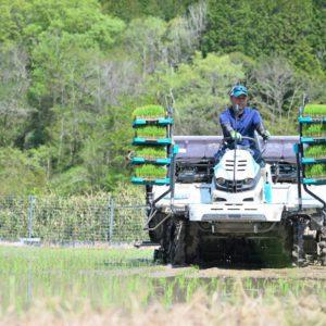 自然においで。瑞浪市日吉町の農家「日吉機械化営農組合」さんへ田植えの様子を拝見して参りました。地元の美味しいお米がここにあるって知って欲しい。