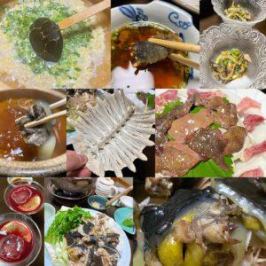 滋養強壮、夏バテ解消!もーお肌がプルップル♪ セラトピア土岐の裏にある食事処ゆづるさんにてスッポン料理フルコースを食す。スッポンカクテルに始まり、刺身、鍋、唐揚げ、酢の物、シメの雑炊まで丸々スッポンを堪能。