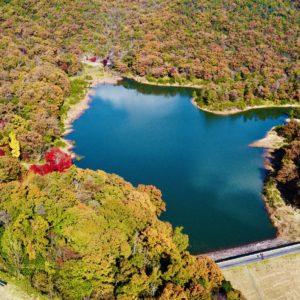 紅葉の秋、目前に。土岐市泉町定林寺にある防災用ダム「定林寺湖」は、地元ハイカーの散策路であり、隠れた紅葉スポット。夕日が特に映え時かと思います。